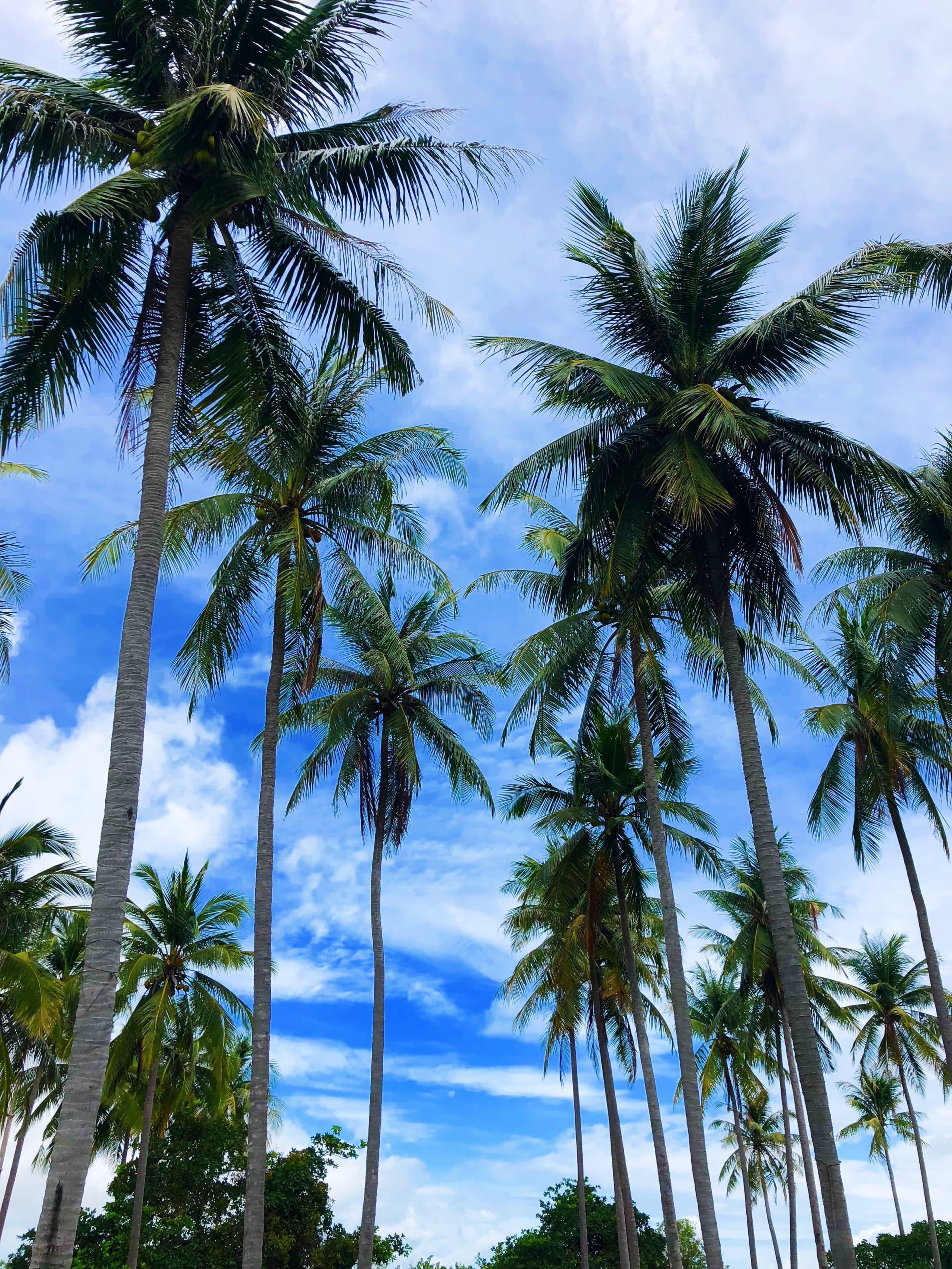 kohyaoyai-thailand-thailand tipps-koh yao yai-phuket-reiseblog thailand