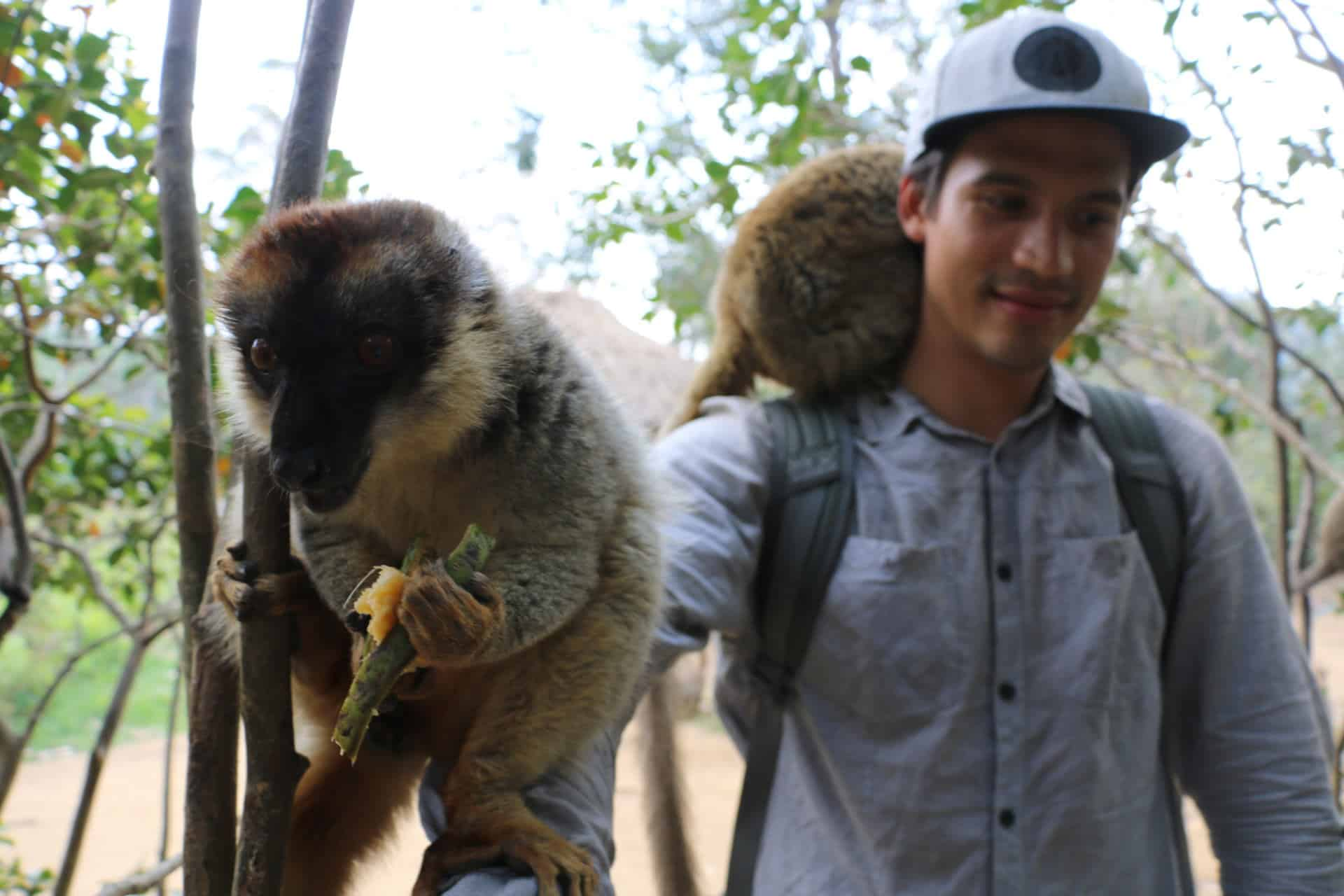 Madagaskar Urlaub Foto mit Lemuren